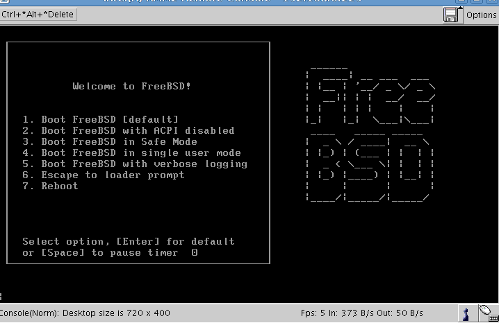 Installing FreeBSD with Remote Management Console